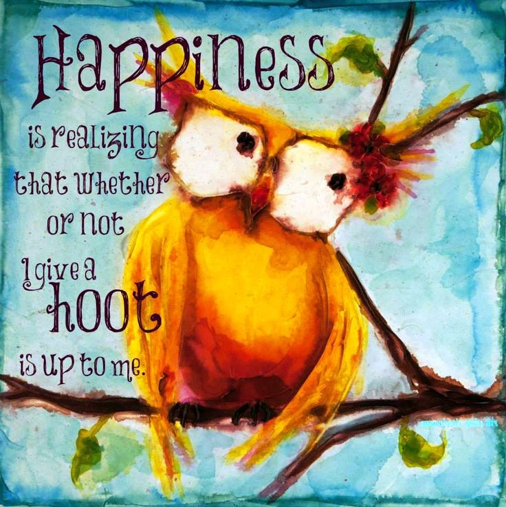 Todays Owl Wisdom Positive Quotes Inspiration Positive Words Classy Todays Quotes About Life