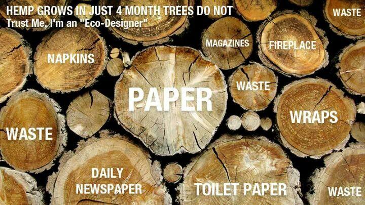 essays hemp for paper vs trees