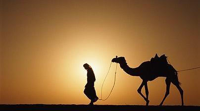 Bedouin leads a camel, Algeria