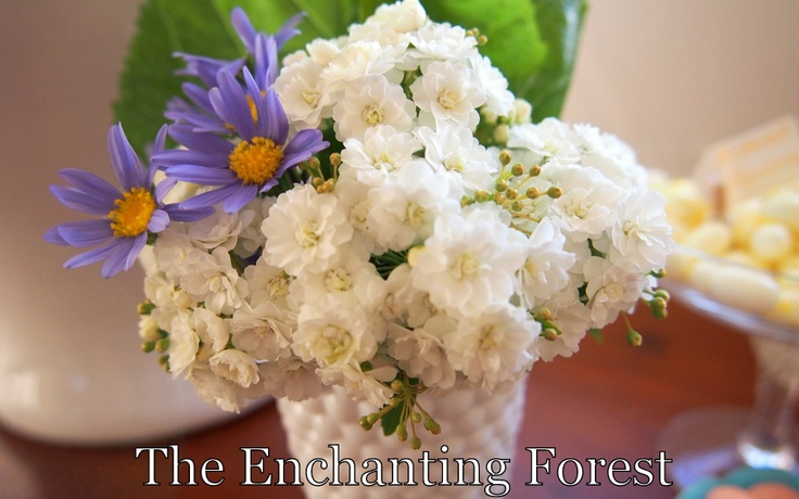 The Enchanting Forest - May flowers with blue daisy.  http://theenchantingforest.blogspot.com.au/#