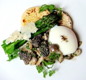 seasonal cooking pictured egg with asparagus and morel ragout ...