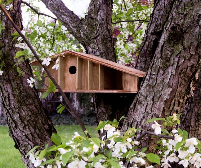 Mid century modern bird house how to diy pinterest for Diy bird house