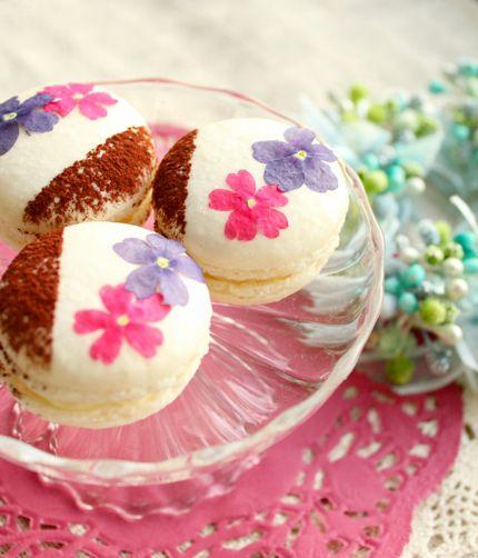 flower tiramisu macarons