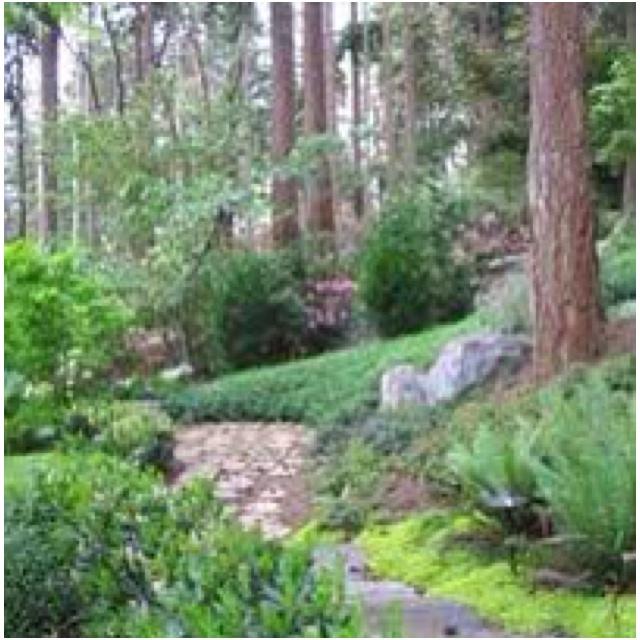 Slope landscape backyard garden design pinterest for Garden designs on a slope