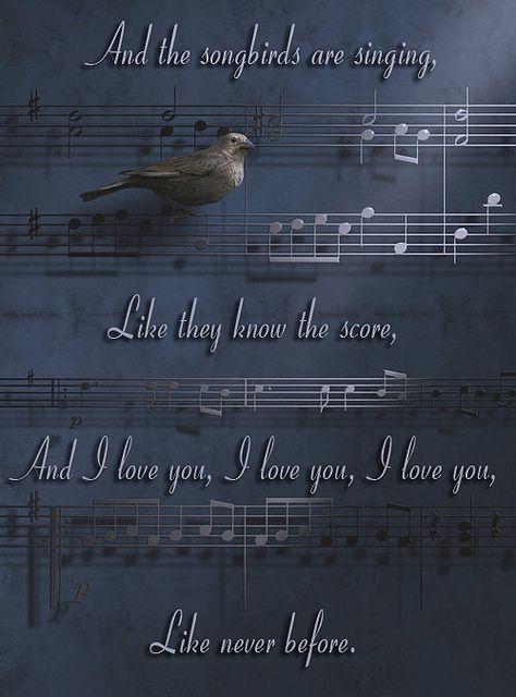 songbird fleetwood: