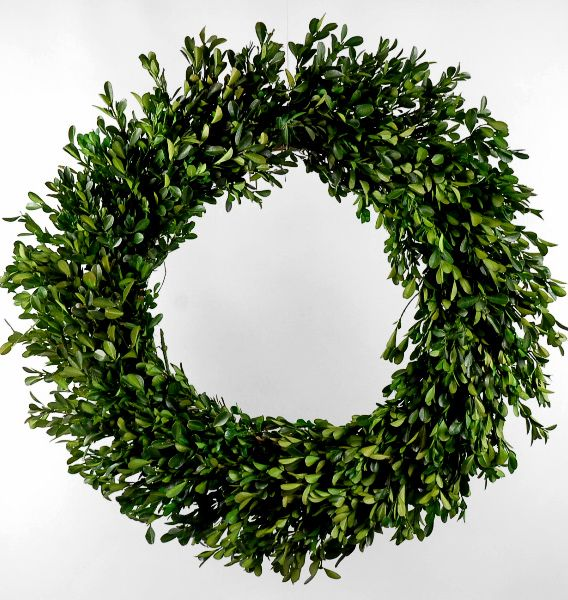 Wreaths preserved boxwood 22 quot 59 stuff i want to buy pinterest