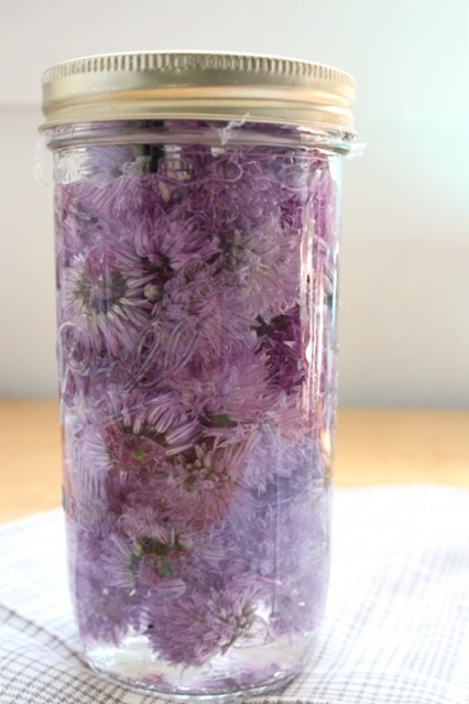 Chive Blossom Vinegar | Oh Yum | Pinterest