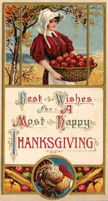 Basket of apples Thanksgiving vintage postcard