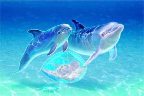 Water womb element | Rebirth Journey | Pinterest
