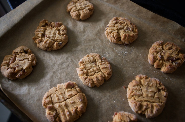 Peanut butter bacon cookies..