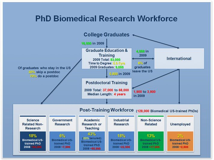 career research c p t Cpt should not be utilized for a work experience or internship that is solely beneficial for career development students must enroll in the coll 211f course or arrange to do an independent study with practicum with a faculty member ( either 295p or 395p) in the semester following your internship failure to enroll in and.