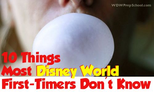 10 Things Most Disney World First Timers Don't Know (Hint: No gum!)