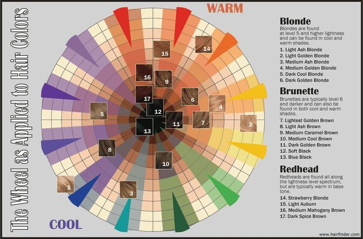 The Hair Color Wheel Hair And Other Musings Of Hair Dye