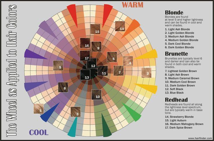Hair Coloring Success The Hair Color Wheel  Dark Brown Hairs