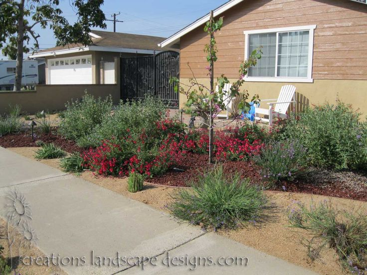 Drought tolerant front yard makeover http for Drought tolerant front garden designs
