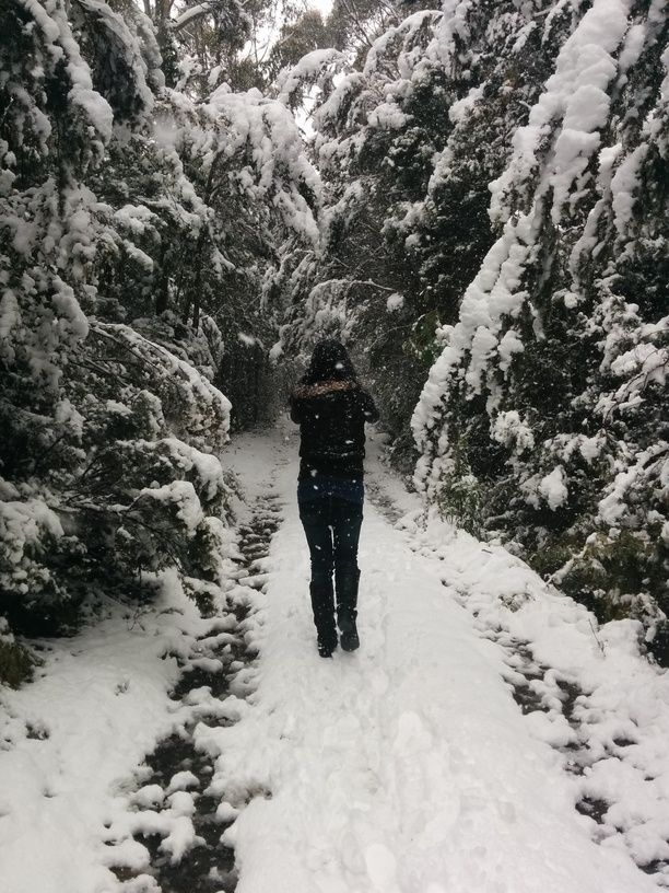 Mt Wellington, Wellington Park, Australia — by Matt Glastonbury. Loving the snow on the mountain this morning!