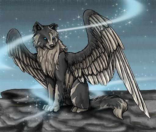 Winged Wolf | Anime Wolves | Pinterest