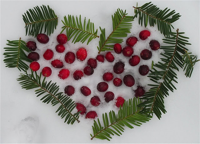 valentine's day outdoor decor