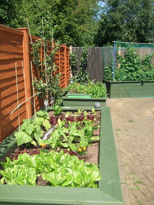 Wheelchair friendly garden community garden pinterest for Garden design ideas for disabled