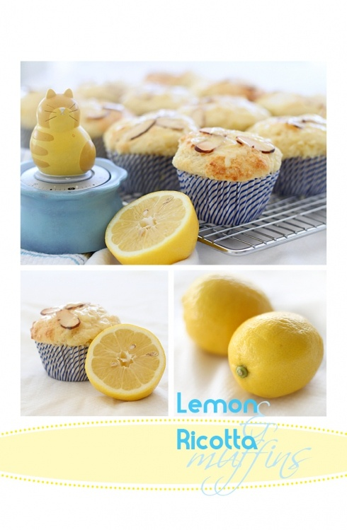 KB: Lemon-Ricotta Muffins with Cool Whip/Dried Blueberry Topping