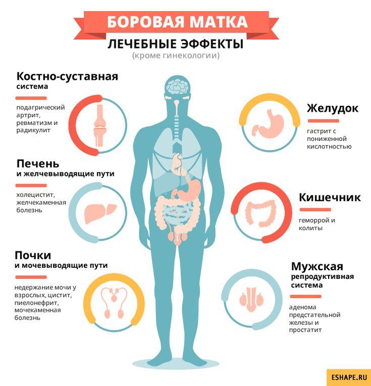 Чистка желудка в домашних условиях без вреда организма