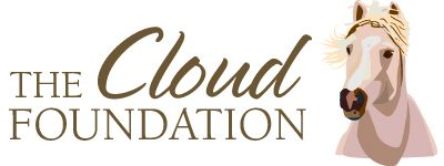 Love the Cloud Foundation