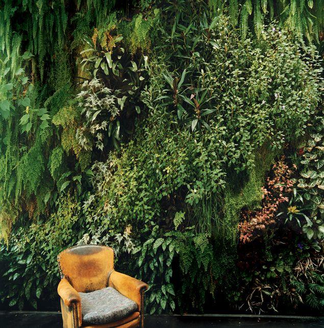 indoor wall garden The Abode Pinterest