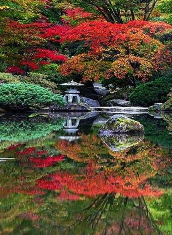 Japanese garden plants and trees decor ideas pinterest for Plants used in japanese gardens