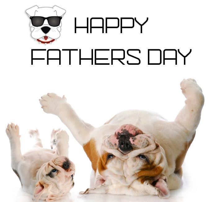 Dogs D Fathers Day