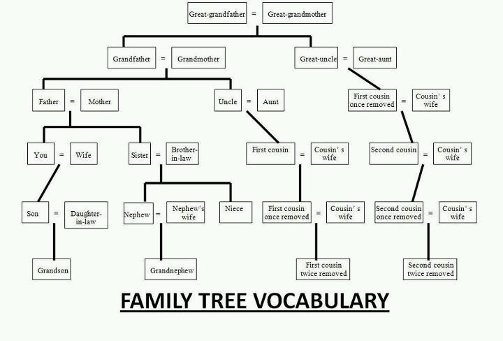 how to make a family tree for school