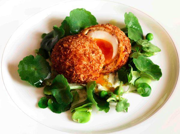 Chorizo Scotch Duck Eggs | F&B - Starters | Pinterest