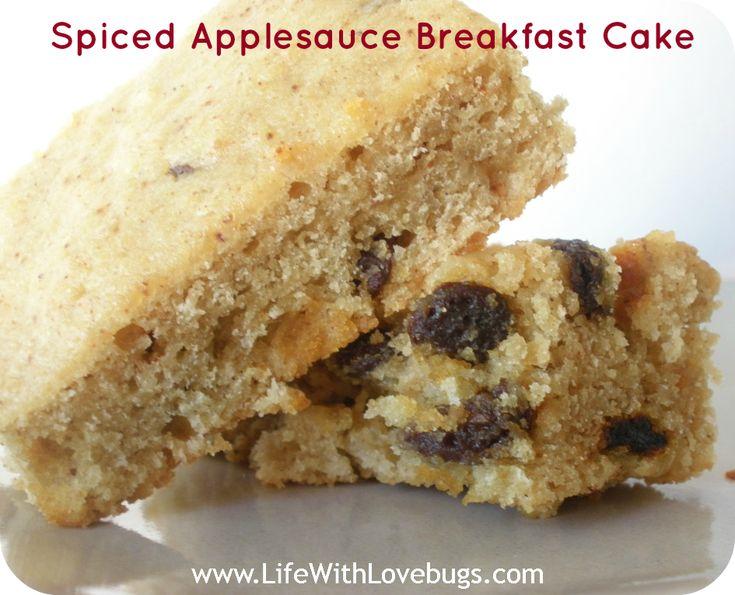 Spiced Applesauce Cake Recipe — Dishmaps