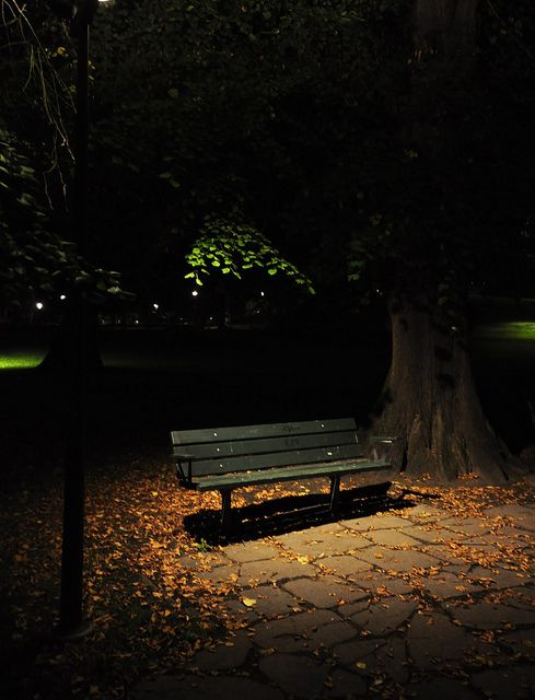 The empty park bench by Mercury dog, via Flickr