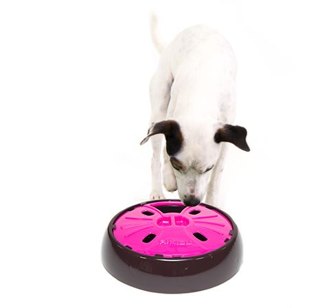 Dog Rotating Food On Wheel