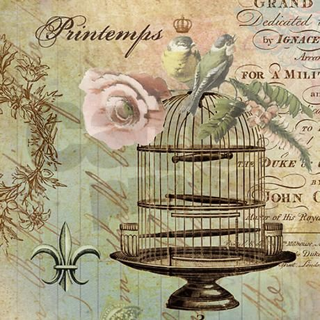 Vintage french shabby chic birdcage shower curtain on for Old french wallpaper