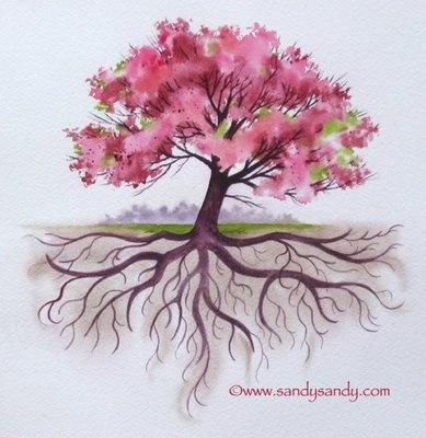 Healing tree as above so below splendor in the trees pinterest