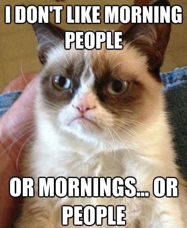 leather bags women The 20 Best 34Grumpy Cat34 Memes  a day without laughter is a day wast