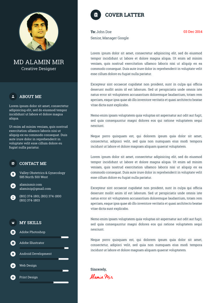 free cv template example