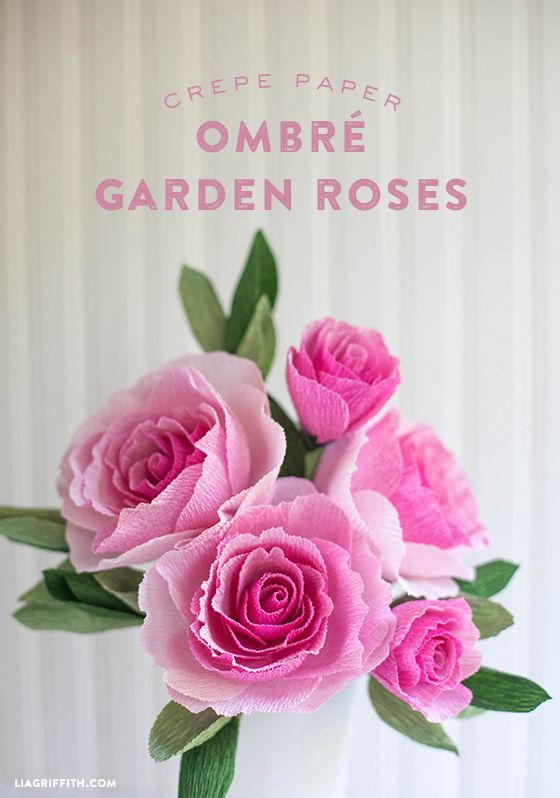 Ombre Crepe Paper Garden Roses