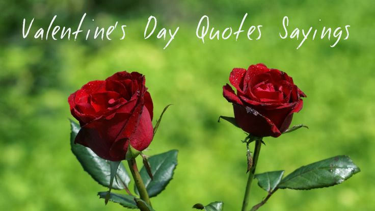 valentine's day hindi articles