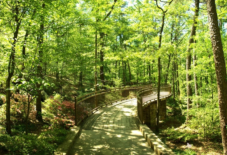 Garvan Woodland Gardens Arkansas Road Trip Usa Pinterest