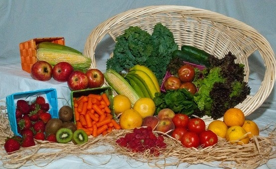 Organic food delivery service