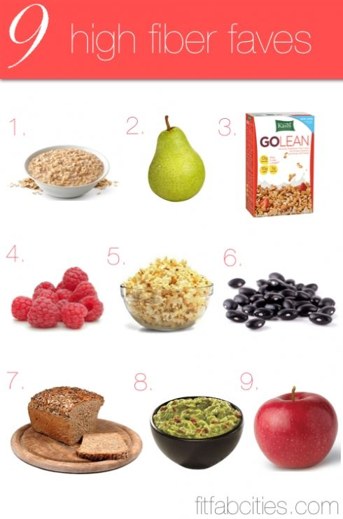 Low Fiber Foods For Cats