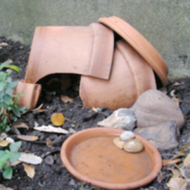 Make your own garden toad house permaculture paradise Make your own toad house
