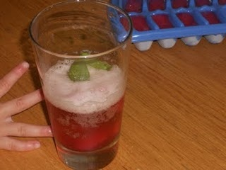 rhubarb and mint ginger ale drink. Delicious idea Holly.
