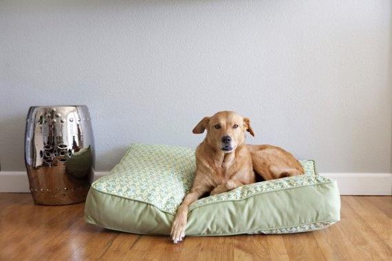 Eco dog bed