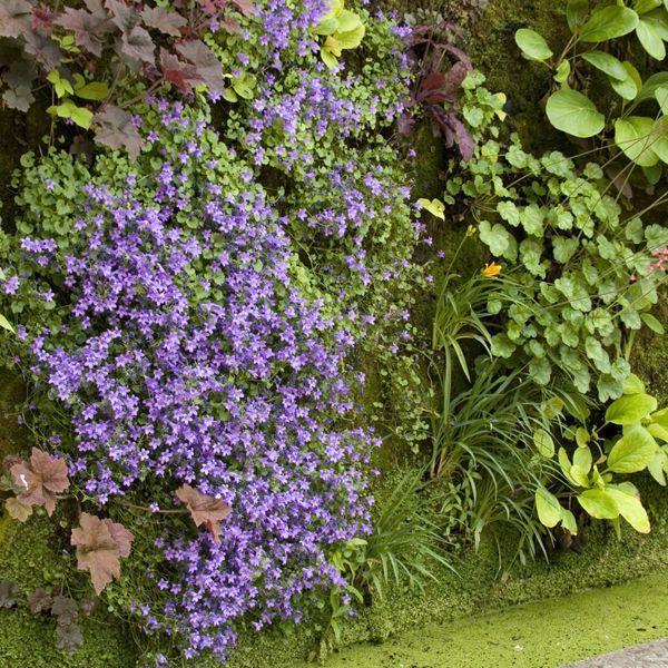 Grow up vertical gardening