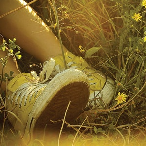 wish for summer and yellow converse shoes