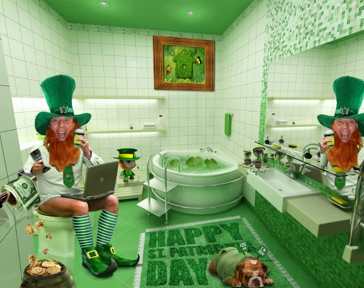 tWiStEd St. Paddys Day toilet humor