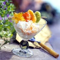 Tropical Fruit Kabobs with Coconut Ice Cream Better Homes & Gardens